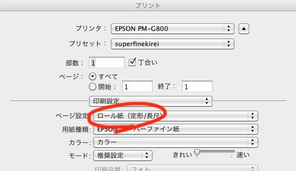 PM-G800 長尺プリント設定
